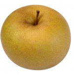 T&B Vergers, pomme reinette du canada
