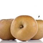 T&B Vergers, variété pomme canada