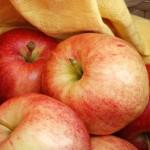 T&B Vergers, pommes Gala