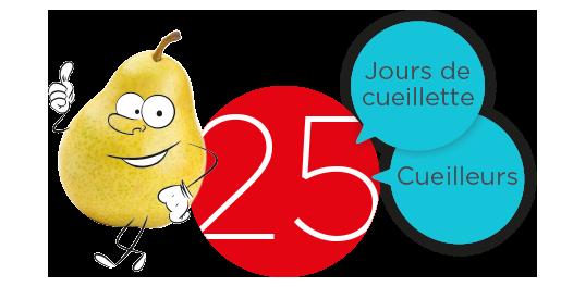 25 jours de cueillettes - 20 cueilleurs