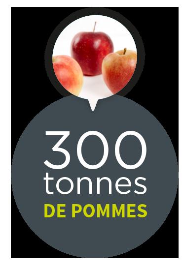 300 tonnes de pommes